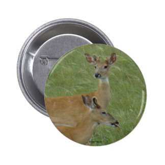 D0006 White-tailed Deer button