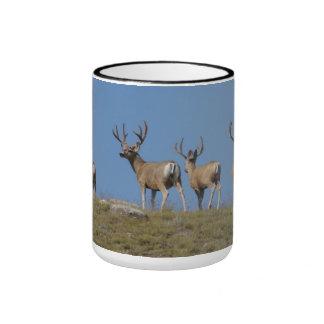 D0009 Mule Deer Bucks in Velvet mug