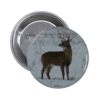 D0011 White-tailed Deer in Snow button