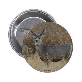 D0014 Mule Deer Doe button