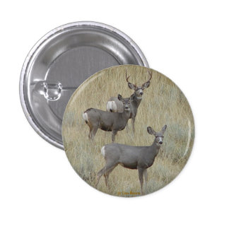 D0018 Mule Deer Pinback Button