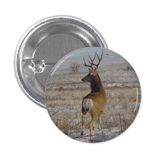 D0020 Mule Deer Buck Button