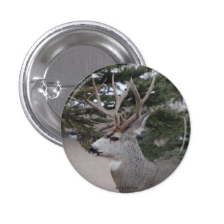 D0025 Mule Deer Buck Button