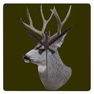 D0027 Mule Deer Buck Head Square Wall Clock
