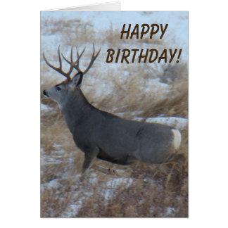 D0028 Mule Deer Buck Running Card