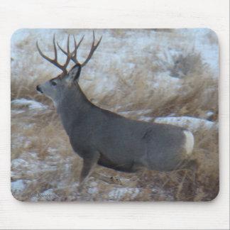 D0028 Mule Deer Buck Running Mouse Pad