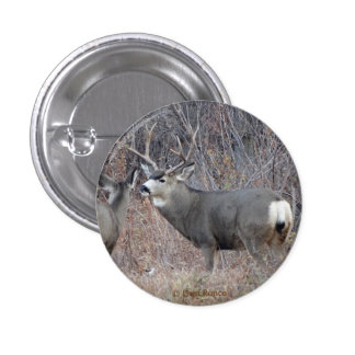 D0029 Mule Deer Button
