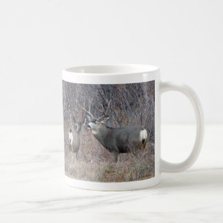D0029 Mule Deer Coffee Mug