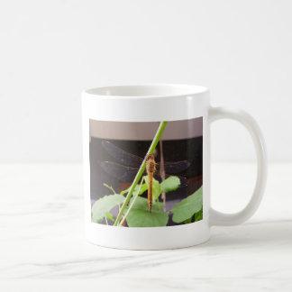d18 coffee mug