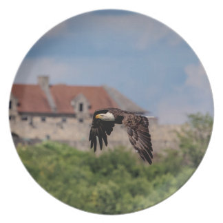 d Eagle passing Fort Ticonderoga Melamine Plate