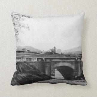 D´entrada Pont - Sant Andreu of the Boat Throw Pillow
