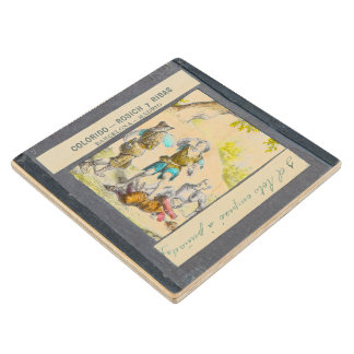 D. Quixote-I Magic lantern view Chapter XXIV Wooden Coaster