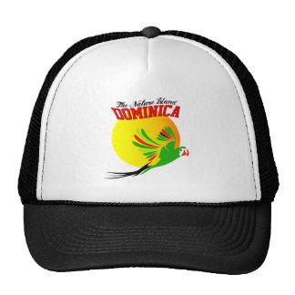 DA ISLE 9 hat