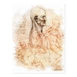 da Vinci -- Bosquejo del hombre y del caballo Postal