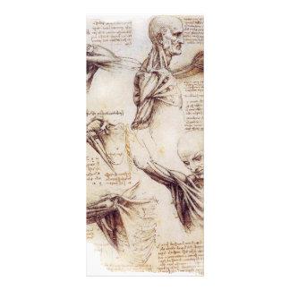 da Vinci -- Bosquejo del hombro Tarjeta Publicitaria Personalizada
