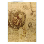 da Vinci - Embryo Sketch Greeting Card