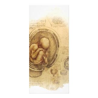 da Vinci - Embryo Sketch Rack Card Design