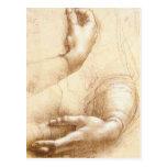 Da Vinci Hands Postcard