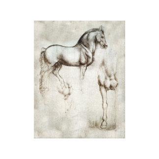 Da Vinci Horse Gallery Wrapped Canvas