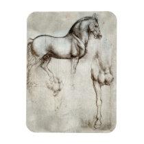 Da Vinci Horse Magnet