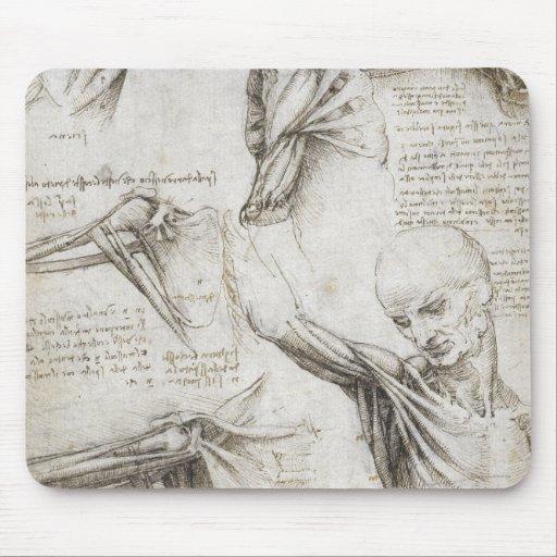 Da Vinci, Leonardo - estudio de la anatomía Alfombrilla De Ratones