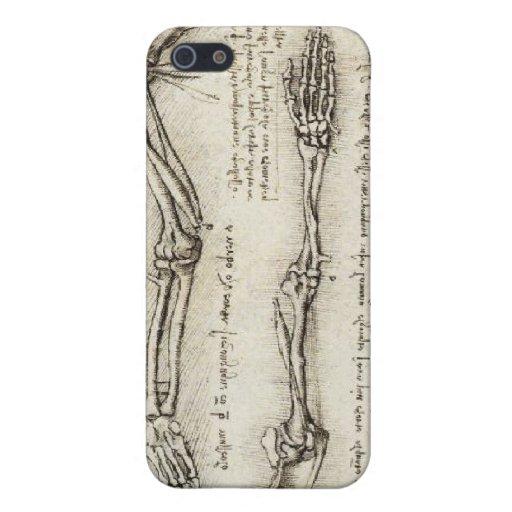 Da Vinci, Leonardo - estudio de la anatomía iPhone 5 Cárcasas