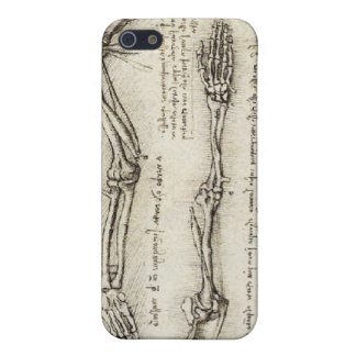 Da Vinci, Leonardo - Study of Anatomy Cover For iPhone SE/5/5s