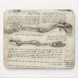 Da Vinci, Leonardo - Study of Anatomy Mouse Pads