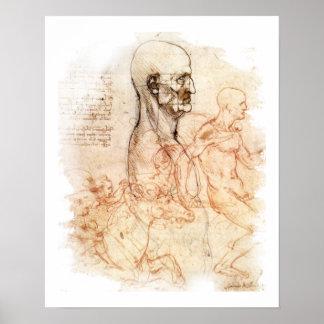 da Vinci - Man and Horse Poster