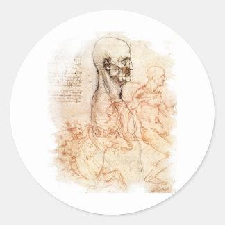 da Vinci -- Man and Horse Sketch Classic Round Sticker