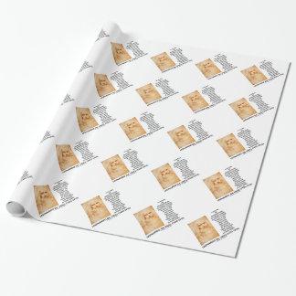 da Vinci Picture Representation Figures Purpose Wrapping Paper