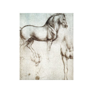 Da Vinci Study of a Horse Pencil Drawing Sketch Canvas Print
