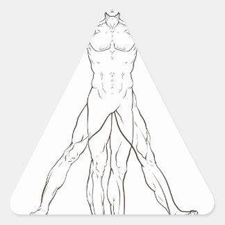 Da Vinci Style Vitruvian Man Triangle Sticker