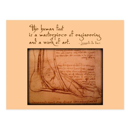 "da Vinci: ""The human foot is..."" Postcards"