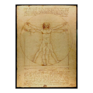 Da Vinci Vitruve Lucas Viatour Póster