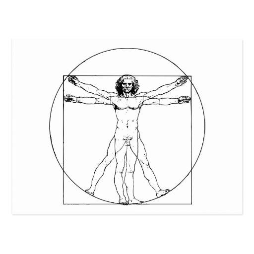 Da Vinci Vitruvian Man Postcards