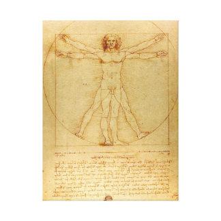 Da Vinci Vitruvian Man Stretched Canvas Gallery Wrap Canvas