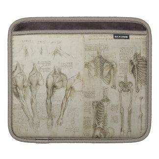 Da Vinci's Anatomy Sleeves For iPads