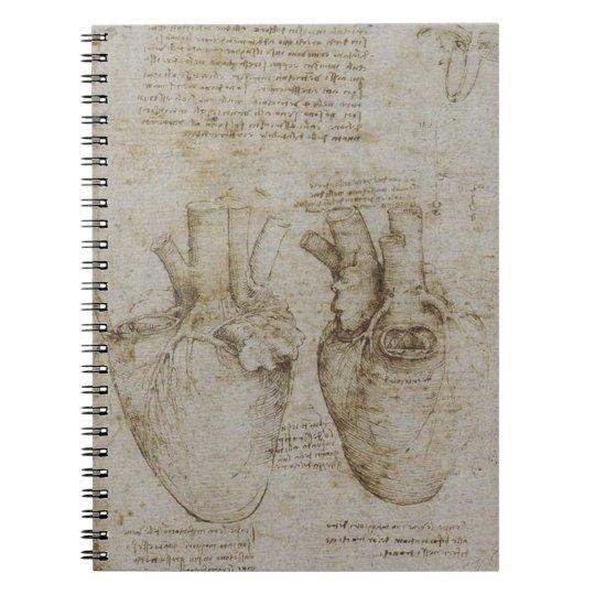 Da Vincis Heart Anatomy Notebook Zazzle