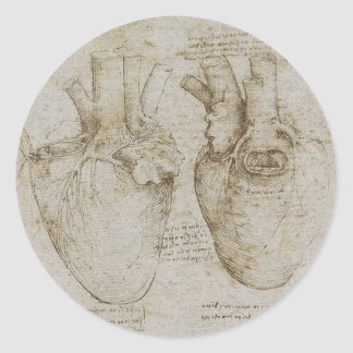 Da Vinci's Human Heart Anatomy Sketches Classic Round Sticker