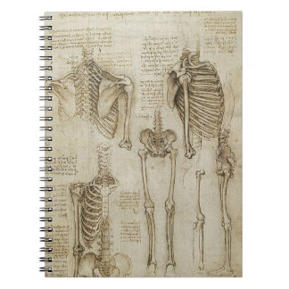 Da Vinci's Human Skeleton Anatomy Sketches Spiral Note Book