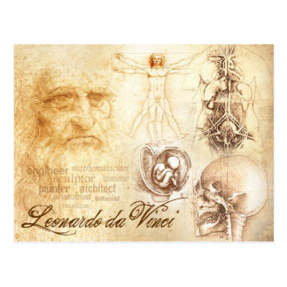 Da Vinci's Self-portrait and Anatomical Studies Postcard