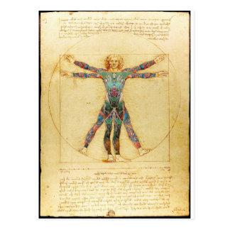 Da Vinci's Vitruvian man with tattoos Postcard