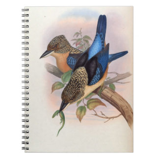 Dacelo Tyro (Spangled Kookaburra) Spiral Notebook