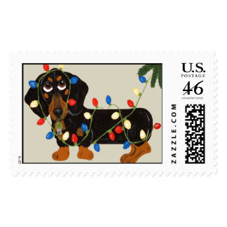 Dachshiund Tangled In Christmas Lights Blk Tan Stamps