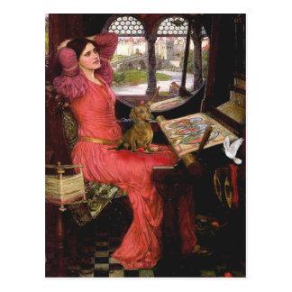 Dachshund 1 - Lady of Shalotte Postcard