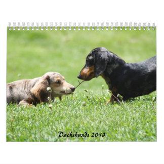 Dachshund 2013 calendario
