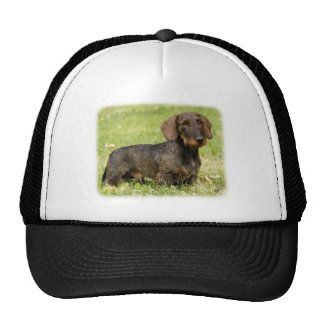 Dachshund 9Y813D-096 Trucker Hat