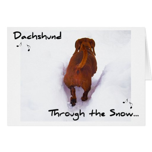 Dachshund a través de la nieve que estralla a tarjeta de felicitación
