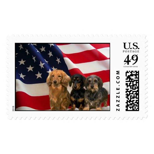 Dachshund America Postage